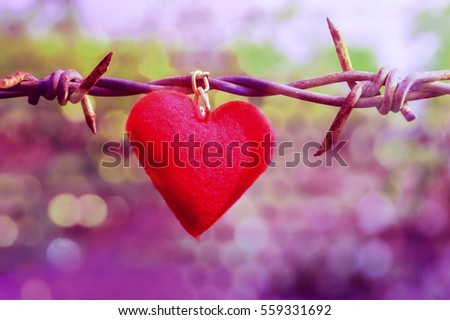 Delighful Barbed Wire Heart Background Stick On And Bokeh Symbol Love Inspiration Decorating