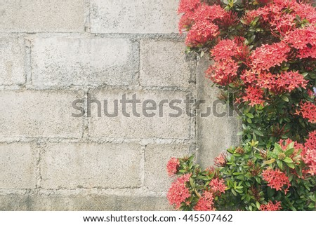 Soft focus of spike flowers on blur brick wall background with vintage style.