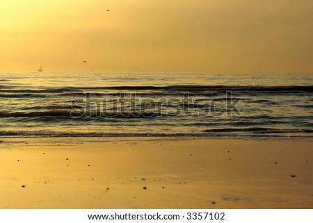 Soft golden dream - stock photo