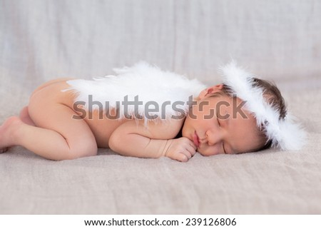 Soft image of cute newborn baby sleeping on grey background covered with white angel's wings and halo nimbus made of feathers, focus on face and hand - stock photo