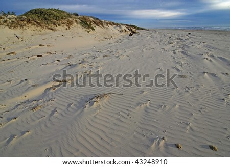 Soft morning light on sand ripples, dunes and the beach of Padre Island National Seashore, Texas, USA. - stock photo