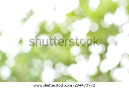 soft natural green bokeh background - stock photo