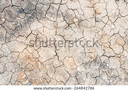 soil background - stock photo
