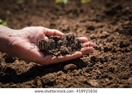 Soil, cultivated dirt, earth, ground, brown land background. Organic gardening, agriculture. Nature closeup. Environmental texture, pattern. Mud on field. - stock photo