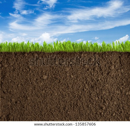 Soil, grass and sky background - stock photo