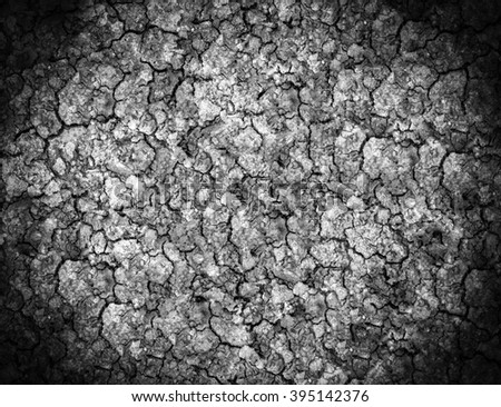soil Ground parched dry land Background patterned ground dry. - stock photo