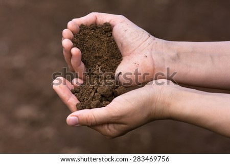 soil in hands of women  - stock photo