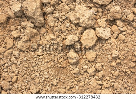 Natural species stock photos images pictures for What are the minerals found in soil