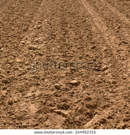 soil prepared for agriculture in northern thailand - stock photo