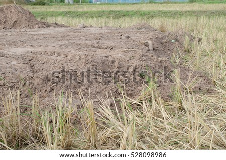 Reclamation stock images royalty free images vectors for Soil reclamation