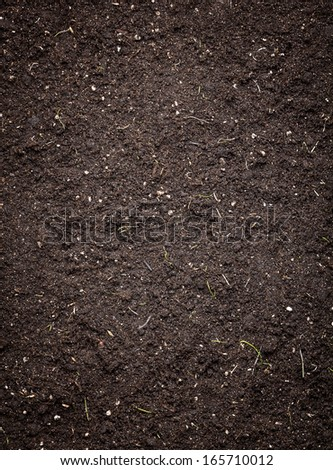Soil texture - stock photo