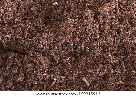 Soil texture background.