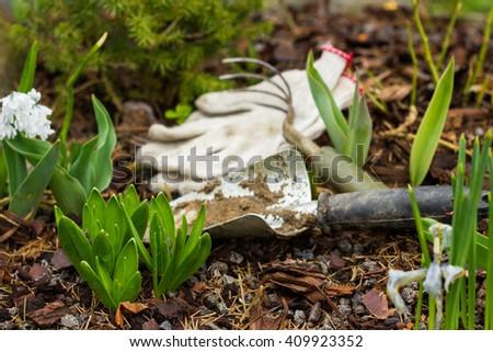 soil, to care for plants, gardening tools work on the farm, gloves, flower, rake - stock photo