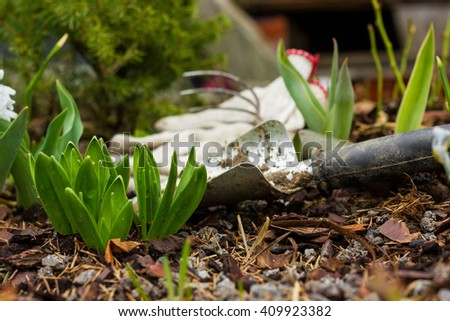 soil, to care for plants, gardening tools work on the farm, gloves, flower, rake - stock photo