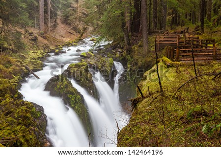 Sol Duc falls, Olympic national park, WA US - stock photo