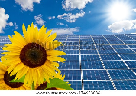 Solar cells and sunflower on a sunny day - stock photo