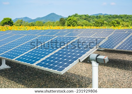 solar energy panels and sunflower farmland , clean energy concept - stock photo