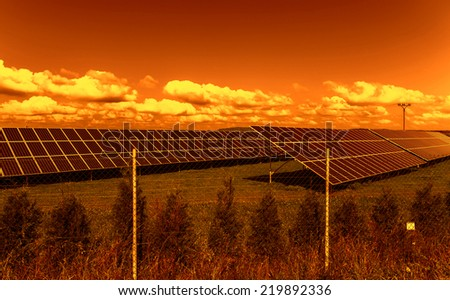 Solar energy panels in the sunset - stock photo