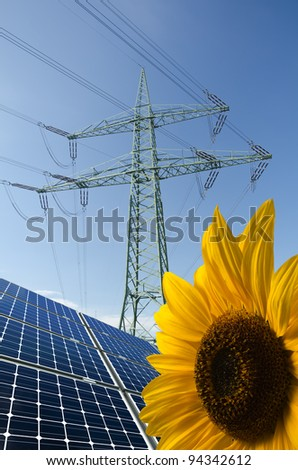 Solar panels, sunflower and utility pole with wires - stock photo