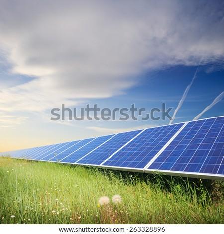 Solar panels under blue summer sky on field of flowers - stock photo