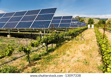 Solar photo voltaic collectors powering a California vineyard, reducing the carbon footprint - stock photo