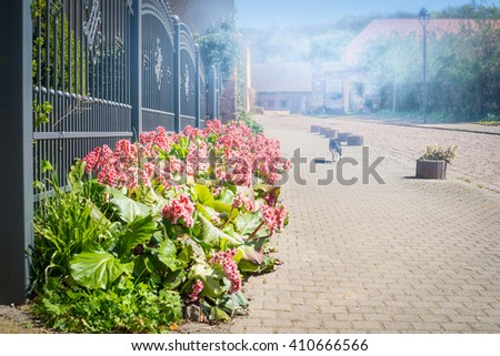 solar street with spring flowers flowerbed near the fence and running cat - stock photo