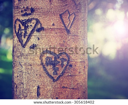 some carvings of hearts and initials of people in love on a tree in a park during sunset or sunrise on a hot summer day toned with a retro vintage instagram filter - stock photo