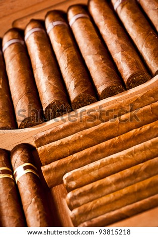 Some cigars lay in humidor - stock photo