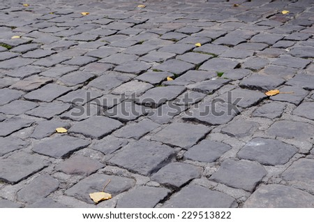 some fallen leaves in a cobblestone ground. Autumn comes - stock photo