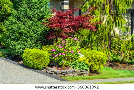 Some flowers and nicely trimmed bushes at the front yard. Landscape design.