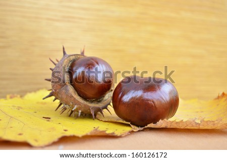 Some fresh chestnuts on wooden background - stock photo