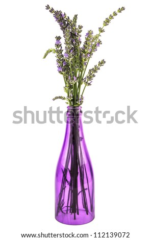 some lavender stems arranged in a purple bottle