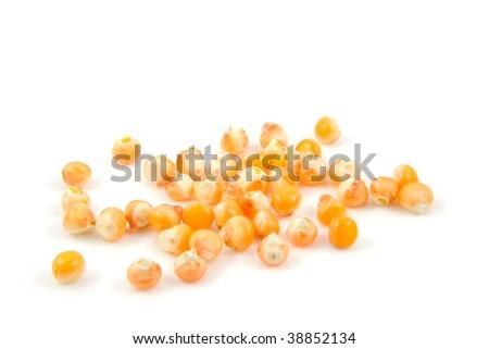 some mais corn isolated on white background - stock photo