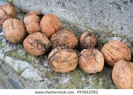Some nuts on stone background