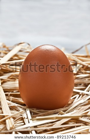 some raw eggs on the straw - stock photo