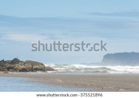 some scenery in Ruby beach on the day,Washington,usa. - stock photo