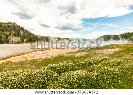some scenic view of landscape in geysers area in yellow stone,Wy,usa. - stock photo