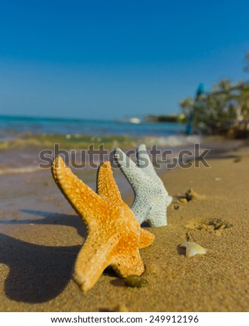Some Stars are Dropped from Heaven  - stock photo