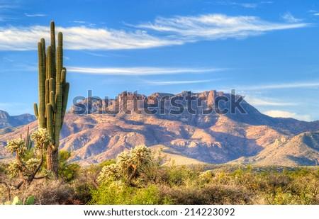 Sonoran Desert catching days first sun rays. - stock photo