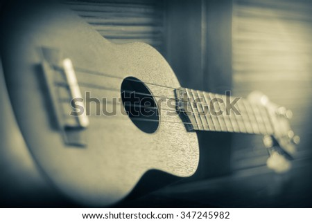 Soprano Ukelele an exotic wooden stringed instrument of the Hawaiian Islands