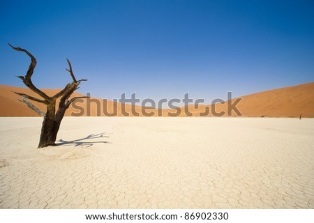 Sossusvlei dead valley landscape in the Namibian desert near Sesriem, Namibia - stock photo