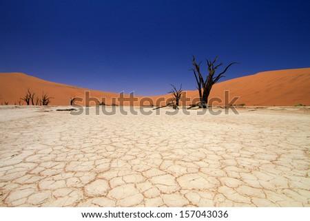 Sossusvlei, Namib W�¼ste - stock photo