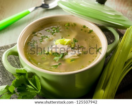 soup with chicken and leek - stock photo