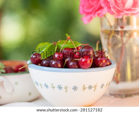 Sour cherry and strawberry in bowls in the garden - stock photo
