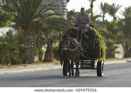 SOUSSE, TUNISIA - MAY 23, 2015: Horse and a cart on a street in Sousse, Tunisia - stock photo
