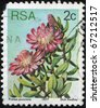 SOUTH  AFRICA - CIRCA 1977: A stamp printed in South Africa shows Protea punctata - Water Sugarbush, circa 1977 - stock photo