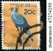 SOUTH AFRICA - CIRCA 1961: A stamp printed in South Africa shows Secretary Bird - Sekretarisvoel, circa 1961 - stock photo