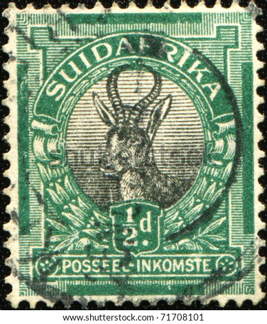 SOUTH AFRICA - CIRCA 1930/45: A stamp printed in South Africa shows Springbok (antelope), circa 1930/45