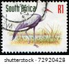 SOUTH AFRICA - CIRCA 1993: A stamp printed in South Africa shows Wattled Crane -  Grus carunculata, circa 1993 - stock photo