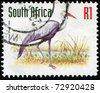 SOUTH AFRICA - CIRCA 1993: A stamp printed in South Africa shows Wattled Crane -  Grus carunculata, circa 1993 - stock photo